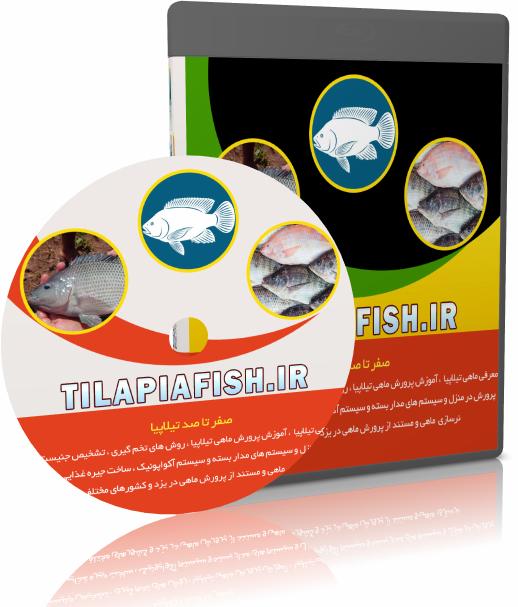 سی دی آموزش پرورش ماهی تیلاپیا